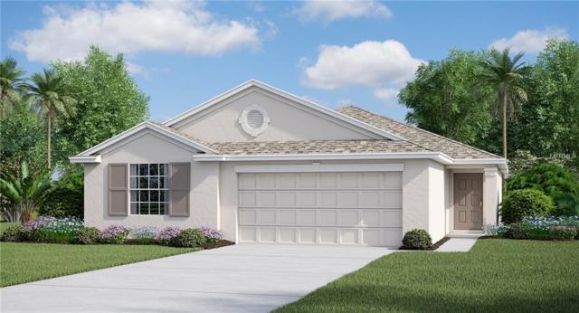 17133 White Mangrove Drive, Wimauma, FL 33598 (MLS #T3101963) :: Team Bohannon Keller Williams, Tampa Properties