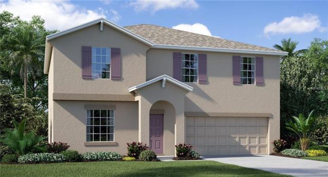 17130 White Mangrove Drive, Wimauma, FL 33598 (MLS #T3101982) :: Team Bohannon Keller Williams, Tampa Properties
