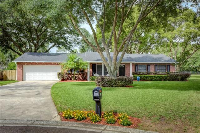 1533 Highcrest Circle, Valrico, FL 33596 (MLS #T3102003) :: Griffin Group