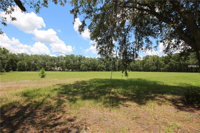 Rogers, Odessa, FL 33556 (MLS #T3102024) :: Team Bohannon Keller Williams, Tampa Properties