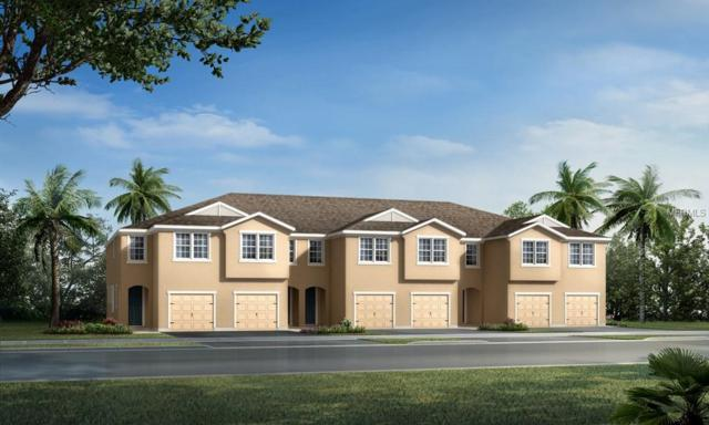11712 Cambium Crown Drive #246, Riverview, FL 33569 (MLS #T3102106) :: Griffin Group