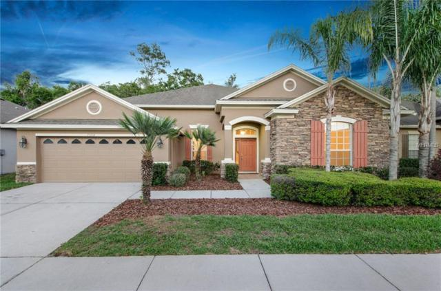7504 Ambleside Drive, Land O Lakes, FL 34637 (MLS #T3102212) :: Griffin Group