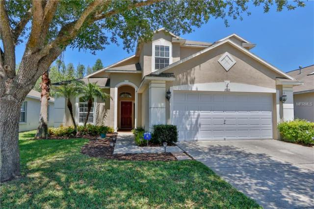 19321 Weedon Court, Land O Lakes, FL 34638 (MLS #T3102240) :: Griffin Group