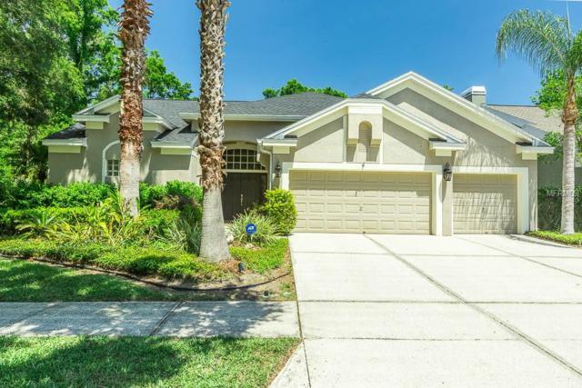 4904 Ebensburg Drive, Tampa, FL 33647 (MLS #T3102286) :: Delgado Home Team at Keller Williams