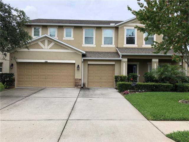 1236 Rushgrove Circle, Dover, FL 33527 (MLS #T3102300) :: The Brenda Wade Team