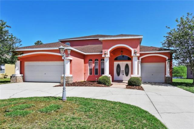 10902 Lynn Lake Circle, Tampa, FL 33625 (MLS #T3102311) :: Revolution Real Estate