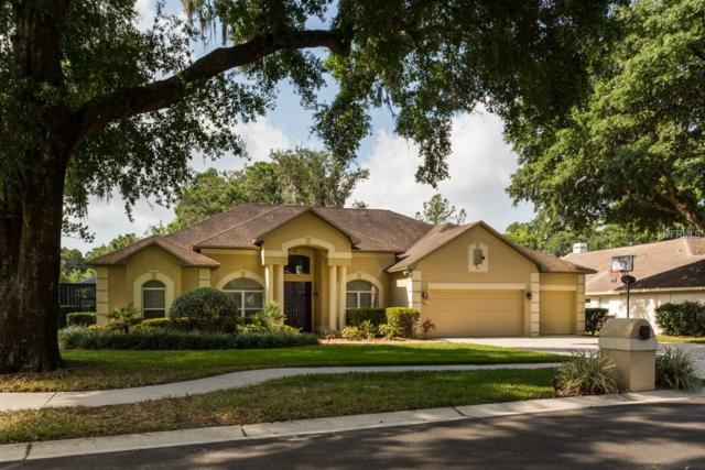 4703 Stone Hollow Court, Valrico, FL 33596 (MLS #T3102357) :: Griffin Group