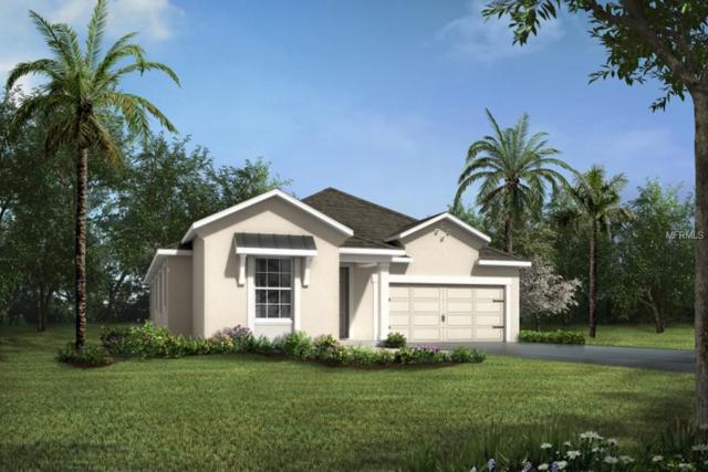 10725 Planer Picket #144, Riverview, FL 33578 (MLS #T3102374) :: Griffin Group