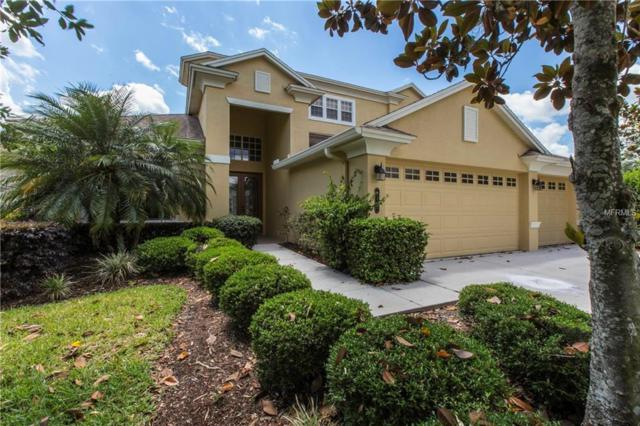 8341 Old Town Drive, Tampa, FL 33647 (MLS #T3102385) :: Revolution Real Estate