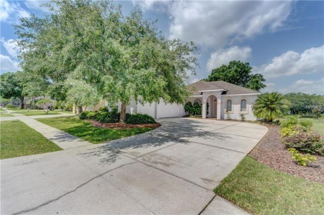 12810 Birmingham Street, Tampa, FL 33625 (MLS #T3102415) :: Griffin Group