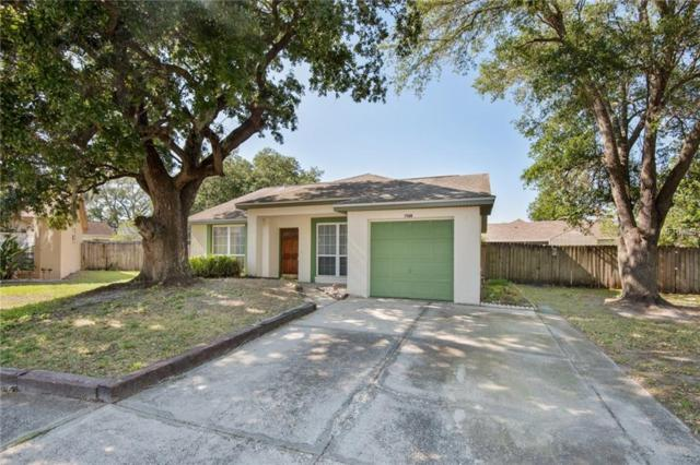 7904 W White Water Court, Tampa, FL 33637 (MLS #T3102417) :: Griffin Group