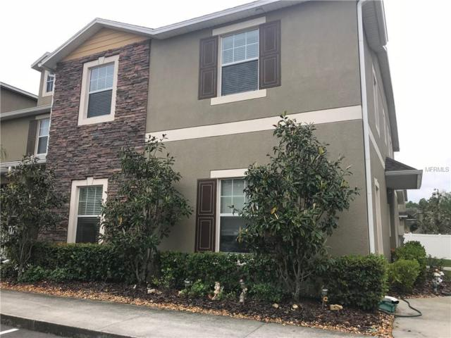 31202 Gossamer Way, Wesley Chapel, FL 33543 (MLS #T3102433) :: The Duncan Duo Team
