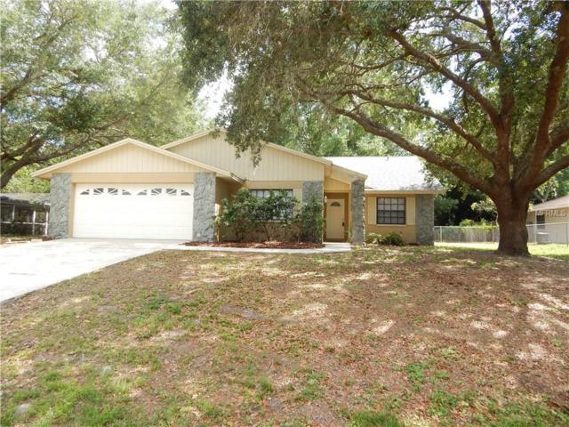 3740 Parkway Boulevard, Land O Lakes, FL 34639 (MLS #T3102459) :: Griffin Group