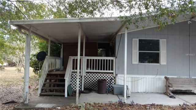 33409 Arthur Drive, Zephyrhills, FL 33543 (MLS #T3102493) :: Cartwright Realty