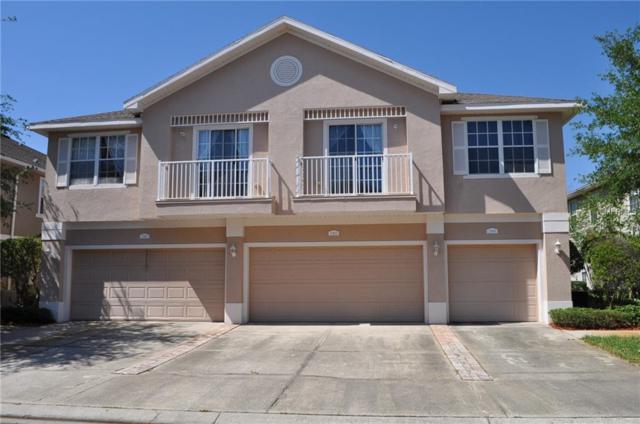 27820 Pleasure Ride, Wesley Chapel, FL 33543 (MLS #T3102532) :: Arruda Family Real Estate Team