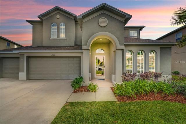 27922 Wild Sienna Loop, Wesley Chapel, FL 33544 (MLS #T3102540) :: Cartwright Realty