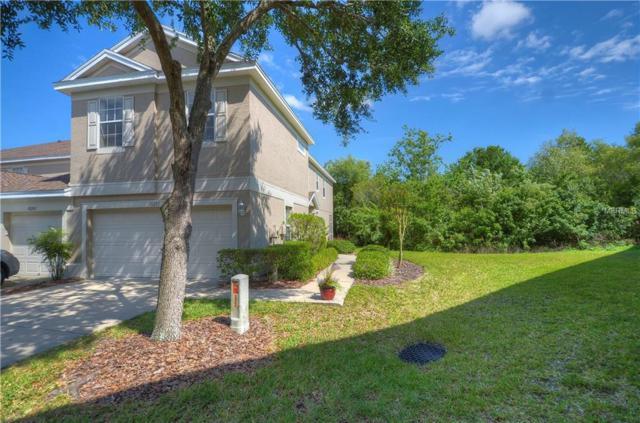10201 Heron Key Way, Tampa, FL 33625 (MLS #T3102549) :: The Duncan Duo Team