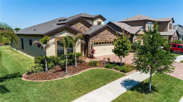 13213 Fawn Lily Drive, Riverview, FL 33579 (MLS #T3102556) :: The Duncan Duo Team