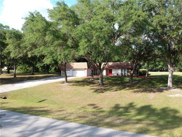 25505 Oaks Boulevard, Land O Lakes, FL 34639 (MLS #T3102568) :: The Duncan Duo Team