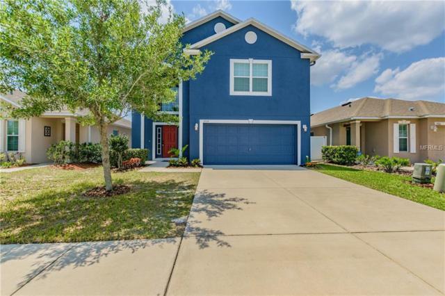 17030 Lixberry Way, Land O Lakes, FL 34638 (MLS #T3102659) :: Cartwright Realty