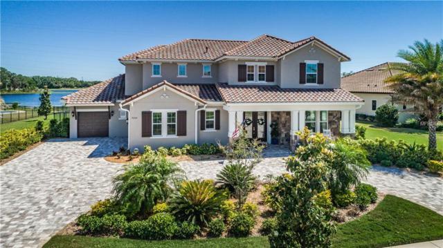 9206 Tillinghast Drive, Tampa, FL 33626 (MLS #T3102729) :: O'Connor Homes