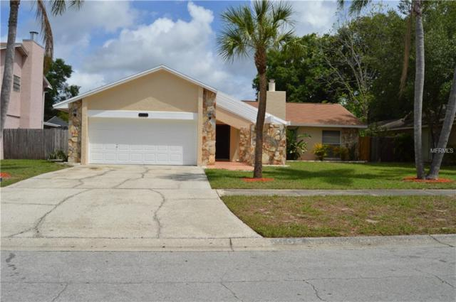 5509 Raven Court, Tampa, FL 33625 (MLS #T3102743) :: Cartwright Realty