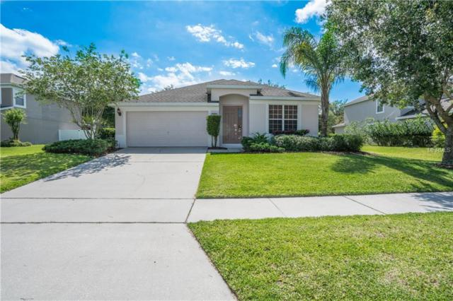 Address Not Published, Clermont, FL 34715 (MLS #T3102779) :: KELLER WILLIAMS CLASSIC VI