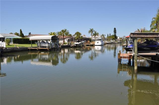 1002 Silver Palm Way, Apollo Beach, FL 33572 (MLS #T3102810) :: Arruda Family Real Estate Team