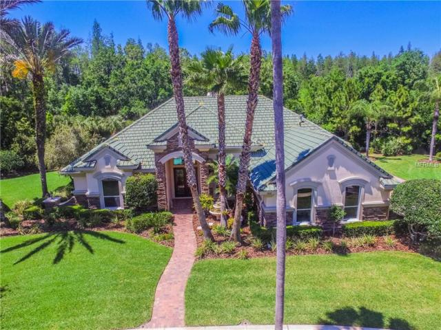 9818 Emerald Links Drive, Tampa, FL 33626 (MLS #T3102815) :: The Duncan Duo Team