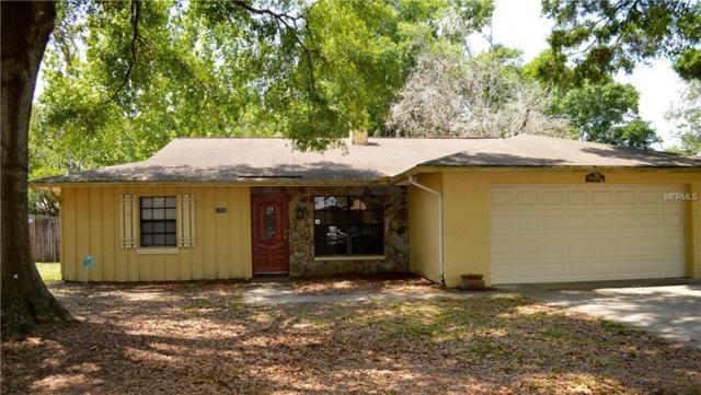 17602 Meadowbridge Drive, Lutz, FL 33549 (MLS #T3102831) :: Griffin Group