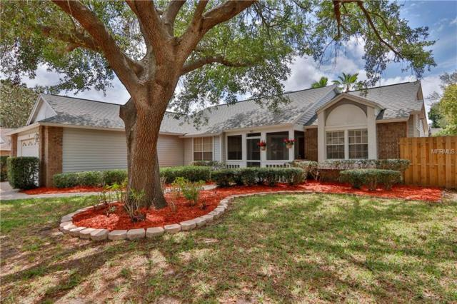 911 Valley View Circle, Palm Harbor, FL 34684 (MLS #T3102858) :: Chenault Group