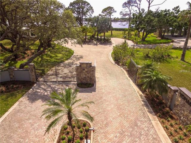 Lot 4 Hillsborough Street, Palm Harbor, FL 34683 (MLS #T3102967) :: Team Virgadamo
