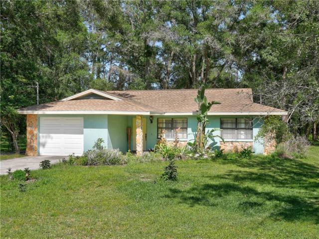 6344 E Boyette Road, Wesley Chapel, FL 33545 (MLS #T3102991) :: The Duncan Duo Team