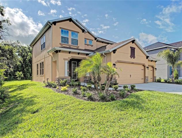 33198 Whisper Pointe Drive, Wesley Chapel, FL 33545 (MLS #T3103021) :: Griffin Group