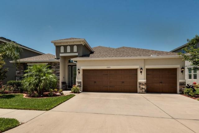 13615 Artesa Bell Drive, Riverview, FL 33579 (MLS #T3103041) :: KELLER WILLIAMS CLASSIC VI