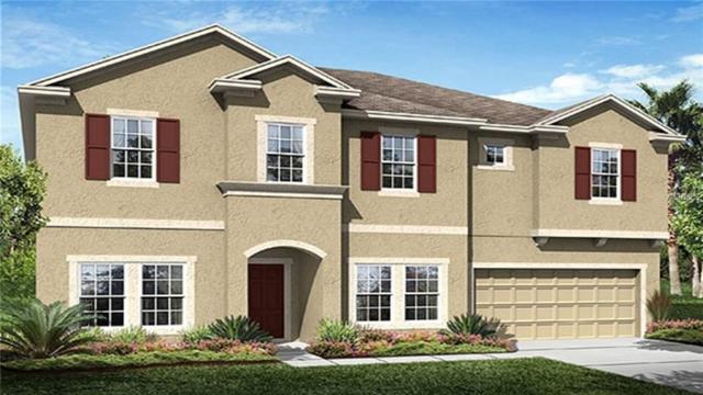 12207 Sabal Palmetto Place, Orlando, FL 32824 (MLS #T3103050) :: The Duncan Duo Team