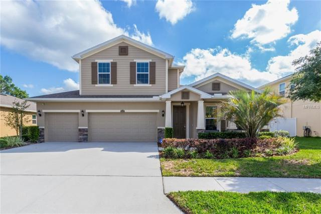 23892 Campania Pass, Land O Lakes, FL 34639 (MLS #T3103138) :: Team Virgadamo
