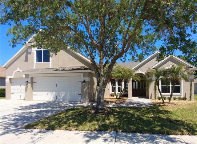 5406 Silver Charm Terrace, Wesley Chapel, FL 33544 (MLS #T3103143) :: Griffin Group