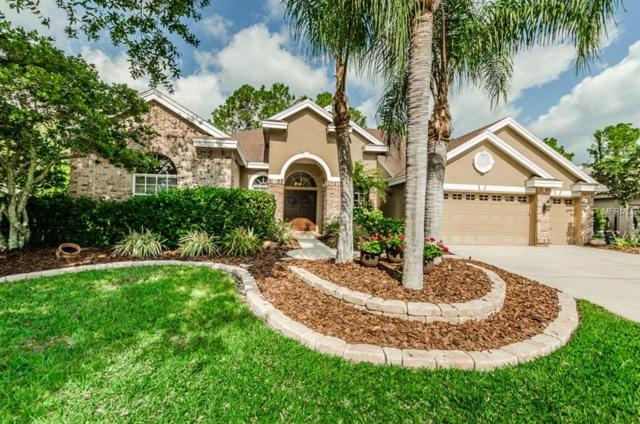 4608 Ayron Terrace, Palm Harbor, FL 34685 (MLS #T3103151) :: Team Virgadamo