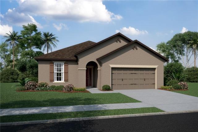 13412 Palmera Vista Drive #227, Riverview, FL 33579 (MLS #T3103156) :: KELLER WILLIAMS CLASSIC VI