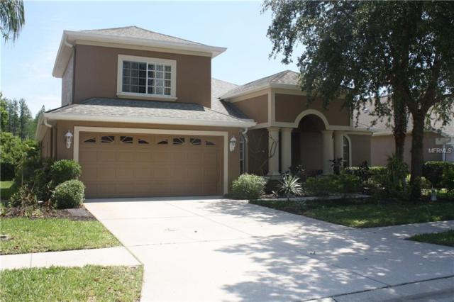 10706 Ribbon Fern Way, Land O Lakes, FL 34638 (MLS #T3103191) :: Team Virgadamo
