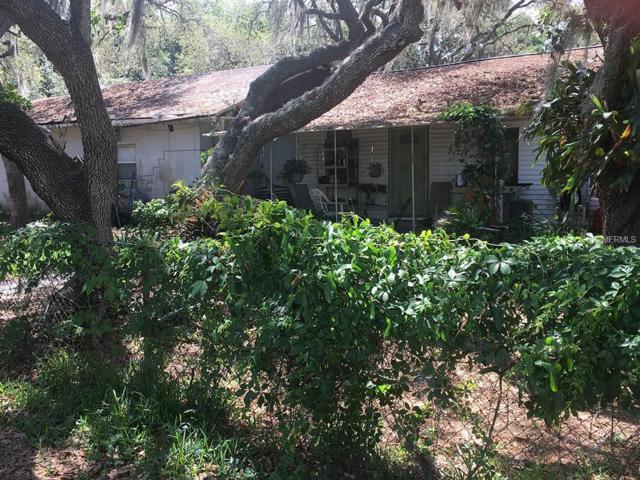 11201 Tucker Road, Riverview, FL 33569 (MLS #T3103200) :: KELLER WILLIAMS CLASSIC VI