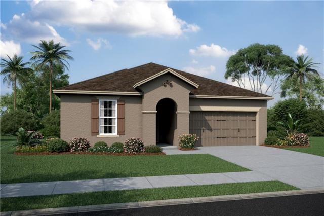 11944 Bahia Valley Drive #421, Riverview, FL 33579 (MLS #T3103204) :: KELLER WILLIAMS CLASSIC VI