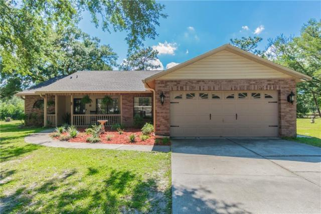 9717 Sunnyslope Lane, Wesley Chapel, FL 33545 (MLS #T3103208) :: Griffin Group