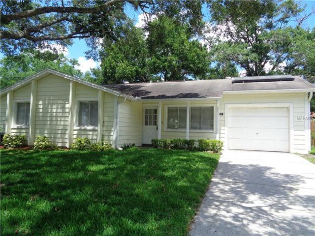 216 Valley Drive, Brandon, FL 33510 (MLS #T3103225) :: KELLER WILLIAMS CLASSIC VI