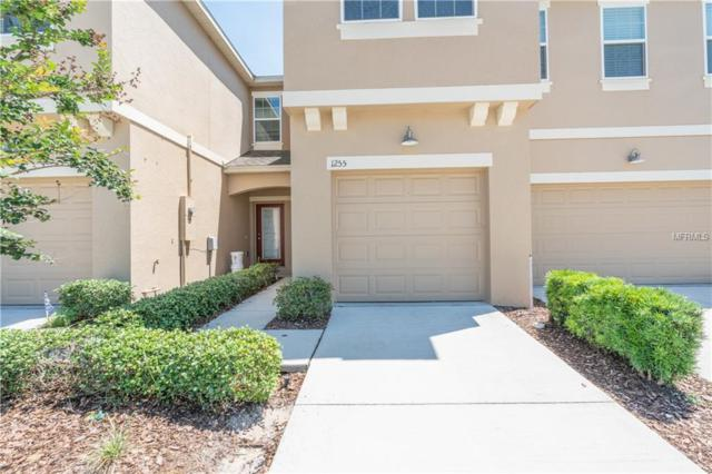 Address Not Published, Ocoee, FL 34761 (MLS #T3103267) :: The Duncan Duo Team
