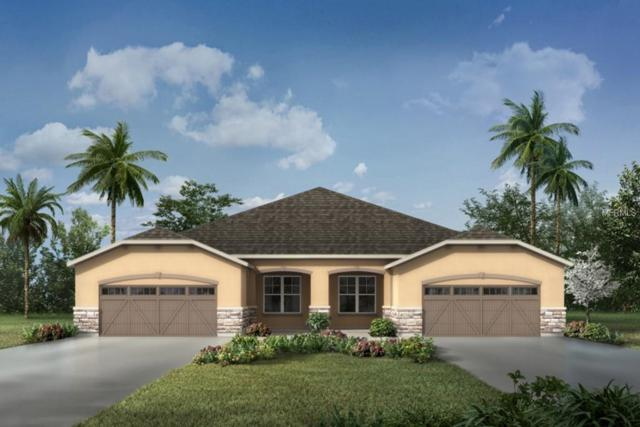 10327 Holstein Edge Place #276, Riverview, FL 33569 (MLS #T3103301) :: The Duncan Duo Team