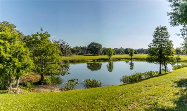 12406 Stonelake Ranch Lot 148 Boulevard, Thonotosassa, FL 33592 (MLS #T3103345) :: The Duncan Duo Team