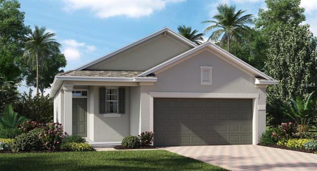13628 Eastfork Lane, Hudson, FL 34669 (MLS #T3103389) :: The Duncan Duo Team