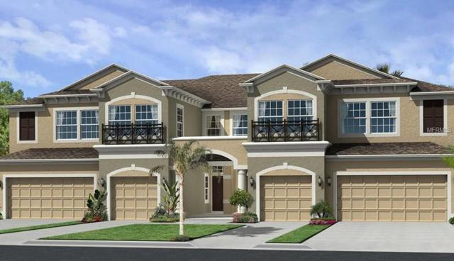 30223 Southwell Lane, Wesley Chapel, FL 33543 (MLS #T3103398) :: The Duncan Duo Team